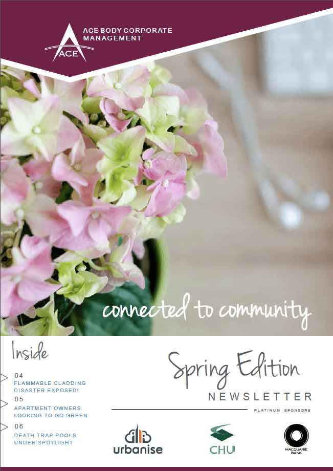 Newsletters Spring Edition
