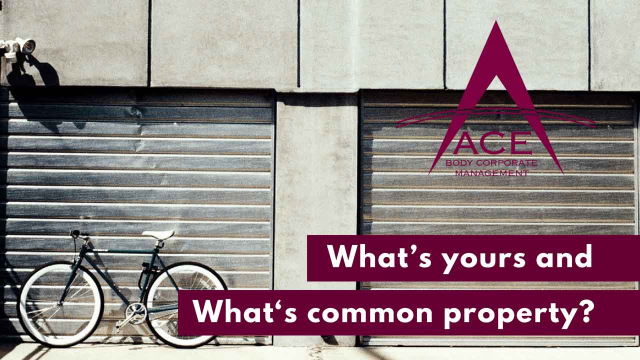 What's Yours and What's Common Property