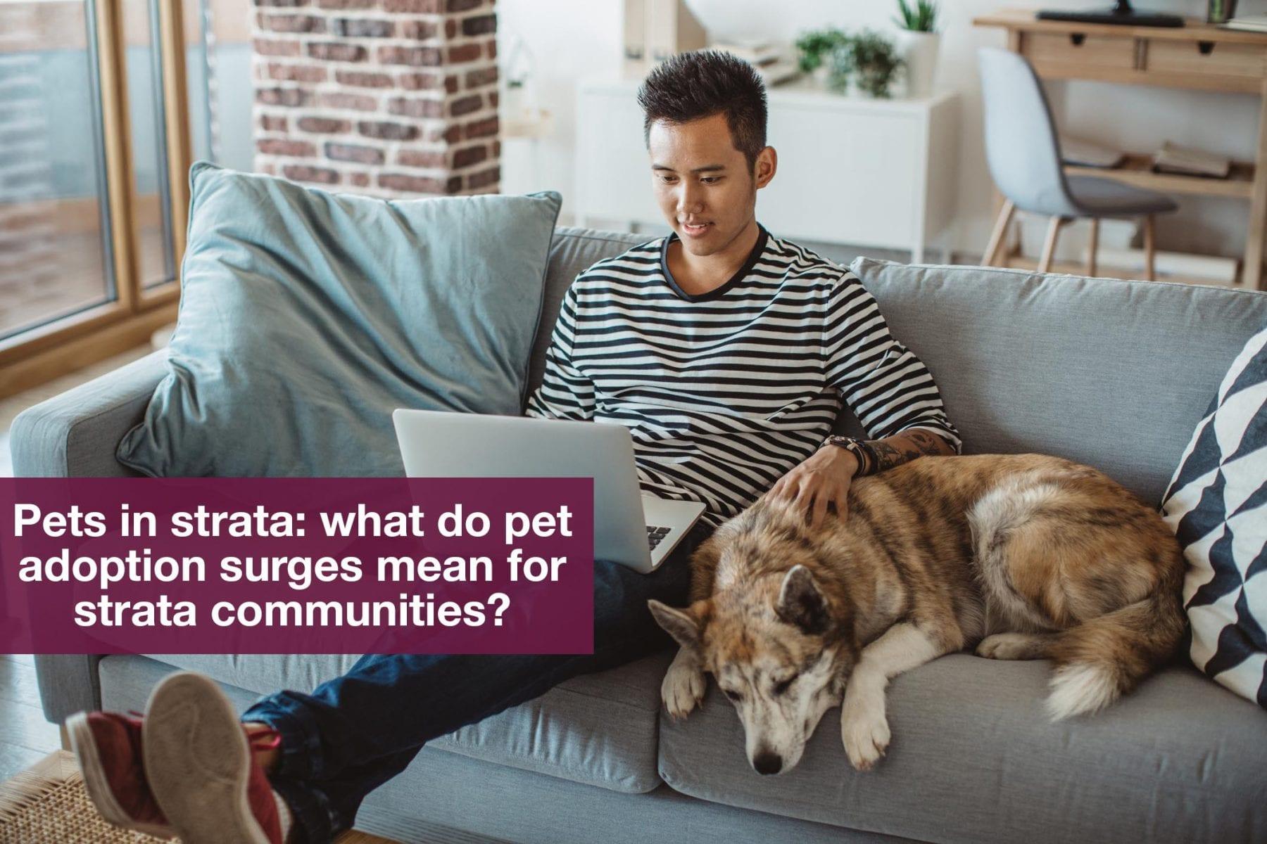 Pets in Strata